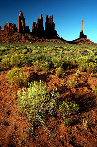 Totems, Monument Valley, Arizona