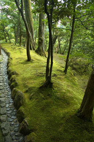 Moss Walkway, Ginkaku-ji Temple, Kyoto, Japan